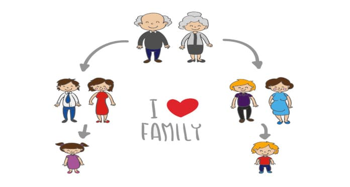family members vocabulary in English