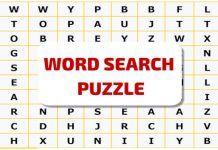 word search puzzle game to play online